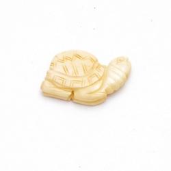 Been kraal schildpad naturel 34 mm (1 st.)