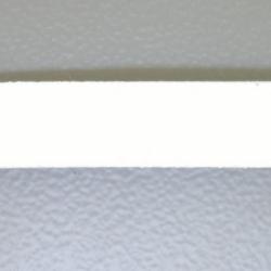 Veter, suede, plat, 10 mm, wit (1 meter)