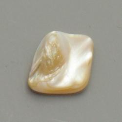 Schelp kraal, wild, wit, 20 mm (10 st.)