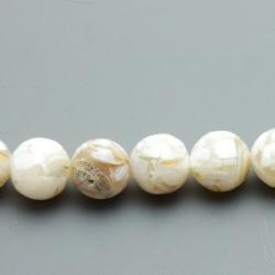 Geperste schelp kraal beige rond 8 mm (10 st.)