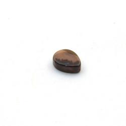Schelp kraal, druppel, dierenprint, 14 mm (10 st.)