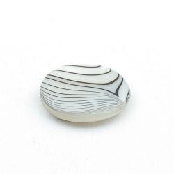 Schelp kraal, rond, wit/zwart, 20 mm (5 st.)