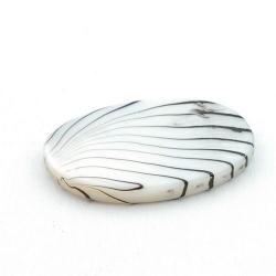 Schelp kraal, ovaal, wit/zwart, 30 x 20 mm (5 st.)