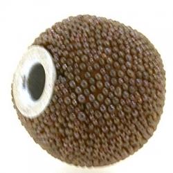 Kashmiri kraal, rond, lichtbruin, groot rijggat, 14 mm (3 st.)