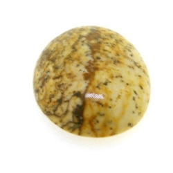 Cabochon, halfedelsteen, Picture Jasper, rond, 14 mm (5 st.)